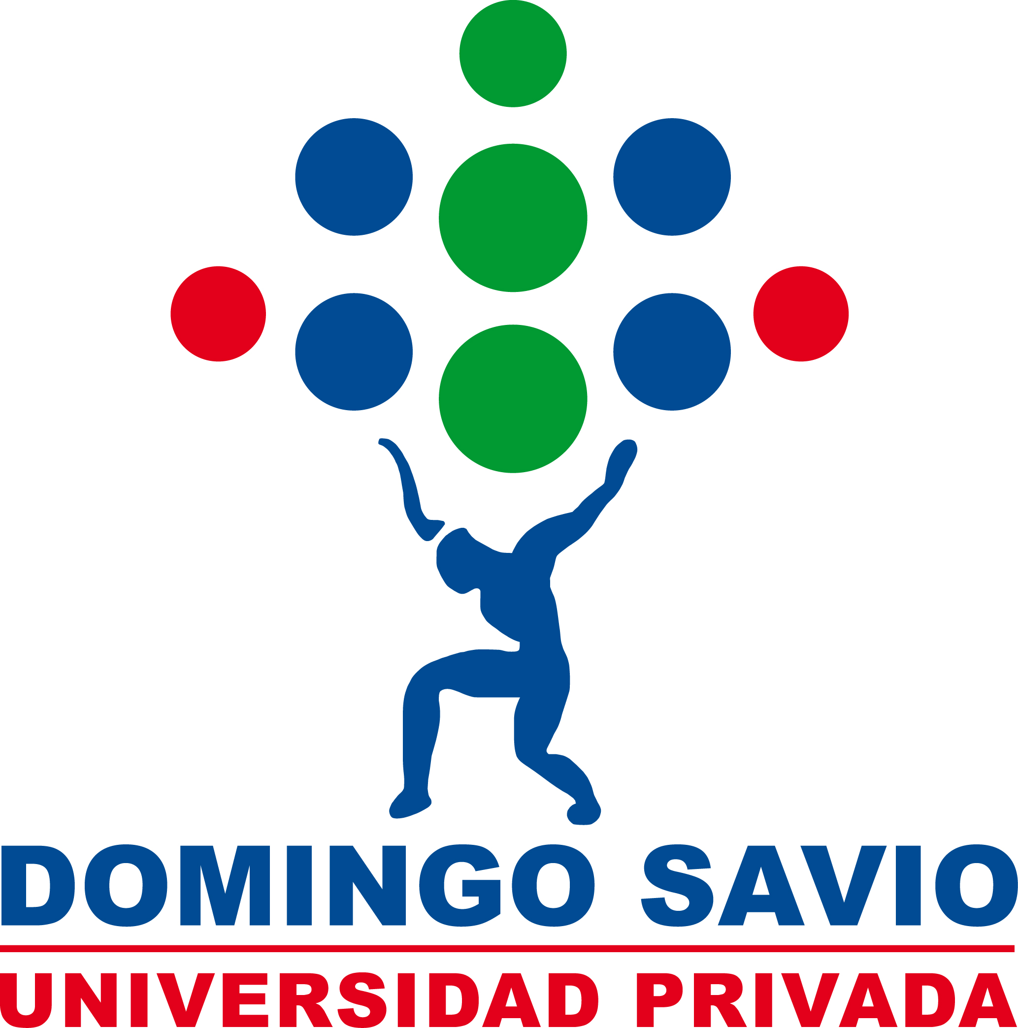 Universidad Privada Domingo Savio